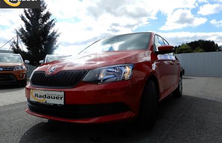 Skoda Fabia 25 1,0 bei Autohaus Radauer in